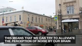�������� ���� Interactive psychoacoustic masker of urban noise pollution ������