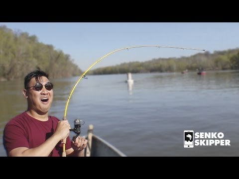 Catfish Fishing: The Fishing Bait That Never Fails