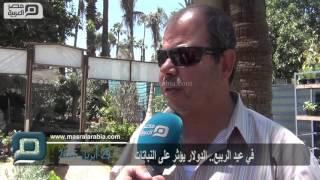 بالفيديو| قبل شم النسيم.. تراجع شديد في بيع النباتات