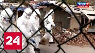 ВОЗ: вне Китая число заражённых коронавирусом выросло в 9 раз. 60 минут от 03.03.20