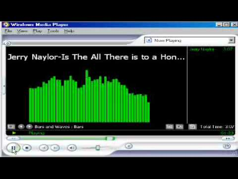Jerry Naylor-Is There All There Is To A Honkey-Tonk