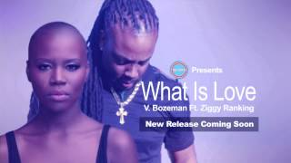 """What is Love"" V. Bozeman ft. Ziggy Ranking Teaser"