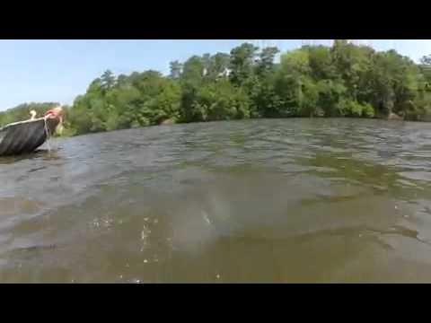 Hand grabbing 33lbs flathead ross barnett reservoir youtube for Ross barnett fishing report