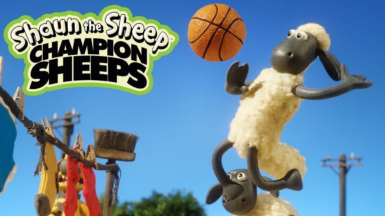 Bóng chuyền bãi biển | Championsheeps | Những Chú Cừu Thông Minh [Shaun the Sheep]