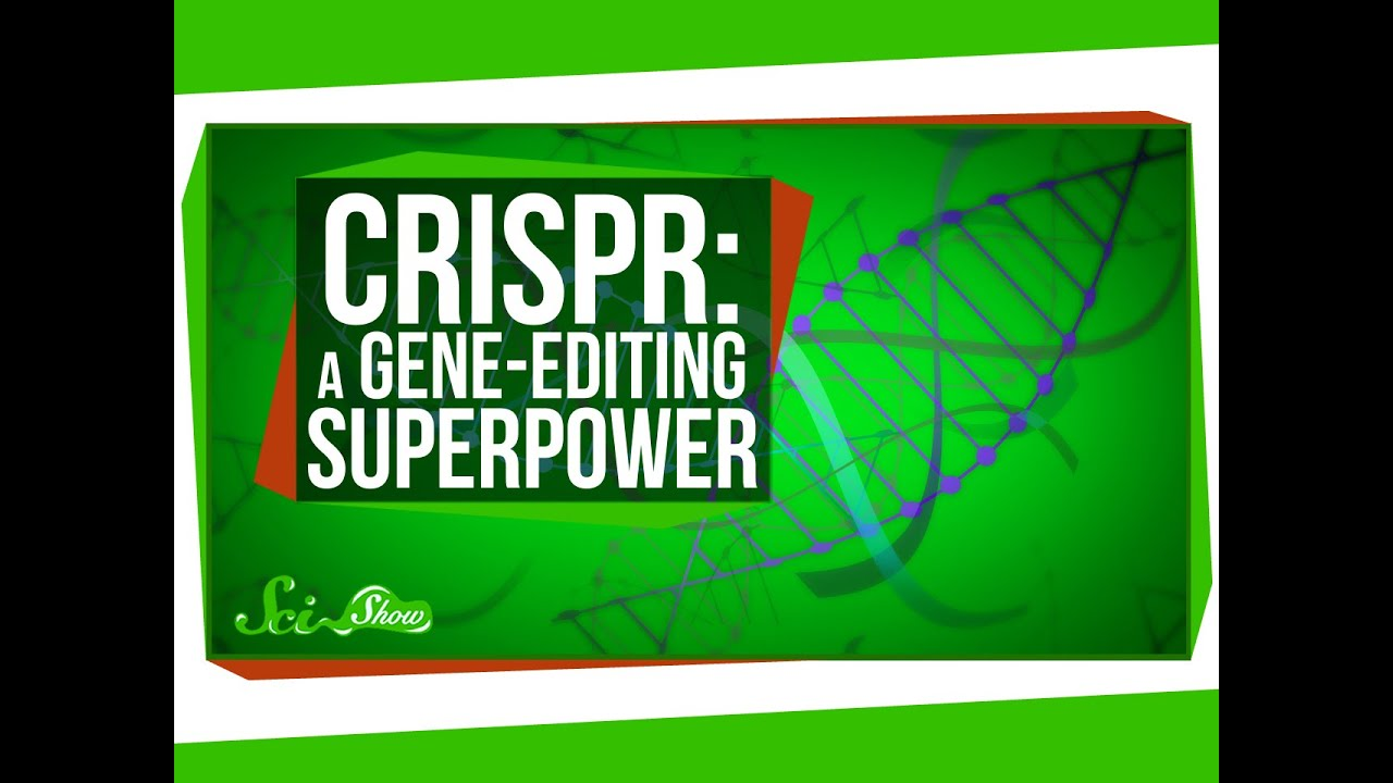 The CRISPR Craze Paints the Future of Genome Engineering
