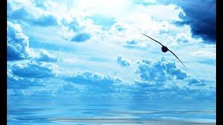 15 июля 2015 - нумерология даты - Чем прекрасен этот день? - ежедневная программа - Иосиф Лазарев