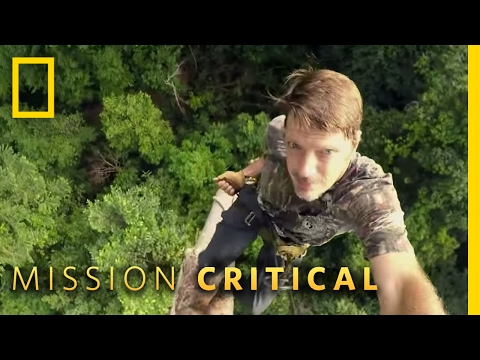 Climbing Trees in Borneo | Mission Critical
