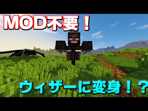 【Minecraft】MOD不要!MOBに変身する!?【コマンド紹介】