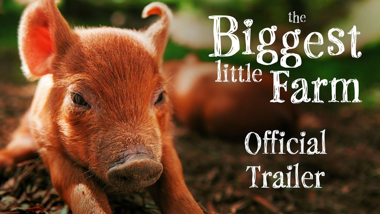 How to Start A Farm | Documentary of the Week | WNYC