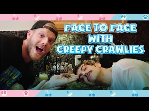 FACE TO FACE WITH CREEPY CRAWLIES