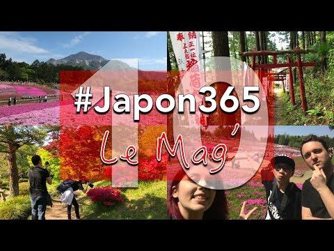 Midori no Hi à Chichibu : des fleurs à perte de vue !  | #Japon365 : Le Mag' - ép.10