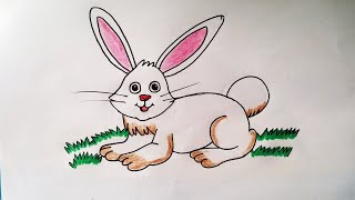 simple rabbit easy drawing beginners