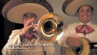 Mariachi Cantares De Mexico | Photo Kiss Photography & Video by Lina Neblina