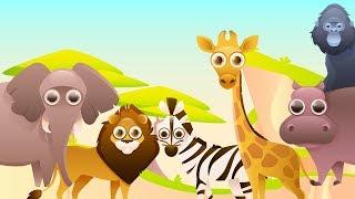 Животные Африки. Интересные факты для детей