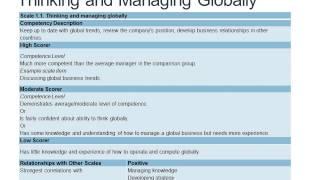 MLQ30 Management and Leadership Assessment Test