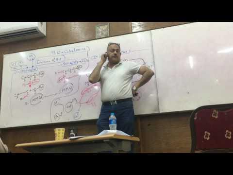 Dr Ayman Beshir - Folic acid 2 , Vit B12 & Vit C