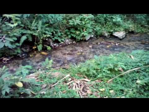 the confluence of hot and cold water of ikogosi town