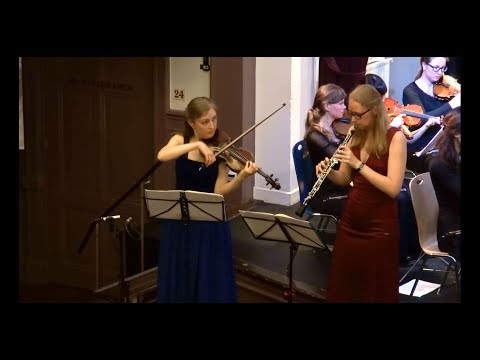 J.S. Bach - Concerto for oboe, violin and strings (T.O.P. Orchestra)