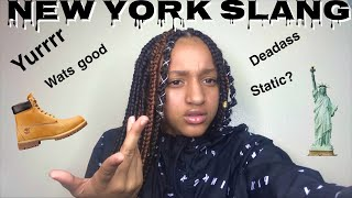 ' NEW YORK SLANG🤟🏼Issa joke don't get pressed 😙