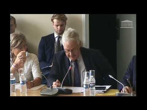 Audition commission des affaires européennes