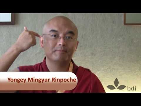 """Happiness is Within You"" - Interview with Yongey Mingyur Rinpoche"