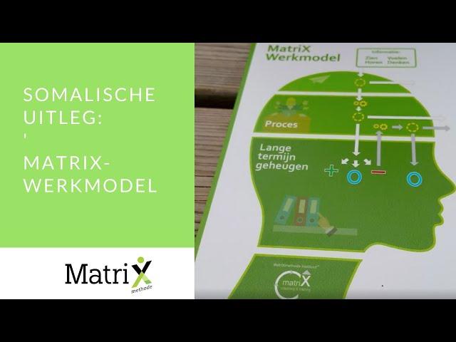 Uitleg 'MatriXwerkmodel' | Somalisch