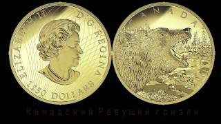 Золотая монета. Канадский Ревущий гризли.