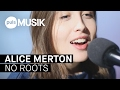 Alice Merton No Roots