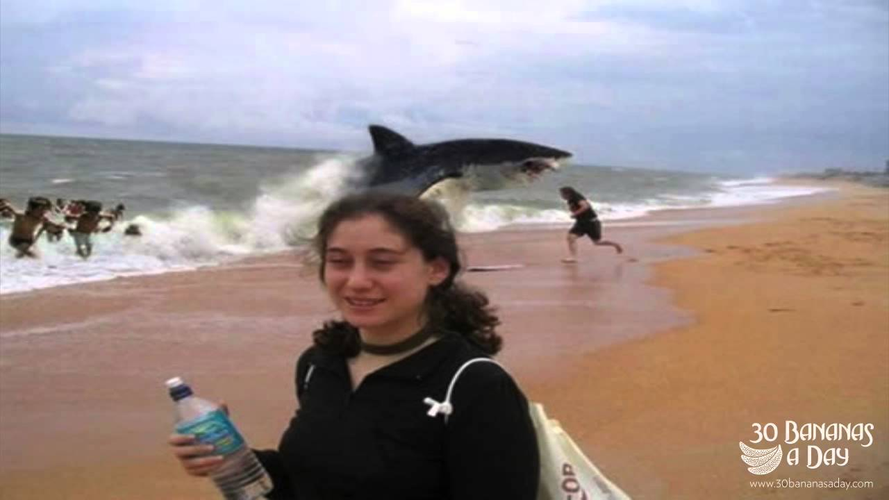 ... Backpacker Shark Attack On Australian Beach : real or fake? - YouTube
