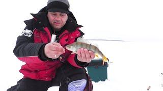 Рыбалка на самом большом озере в ЗАПАДНОЙ СИБИРИ День 2 хищный карась и не только