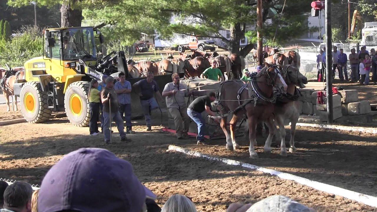 Download Draft Horse Pull 2013 Deerfield Fair NH Pulling Video 19