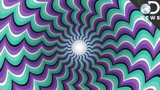 How Optical Illusions Trick Your Brain