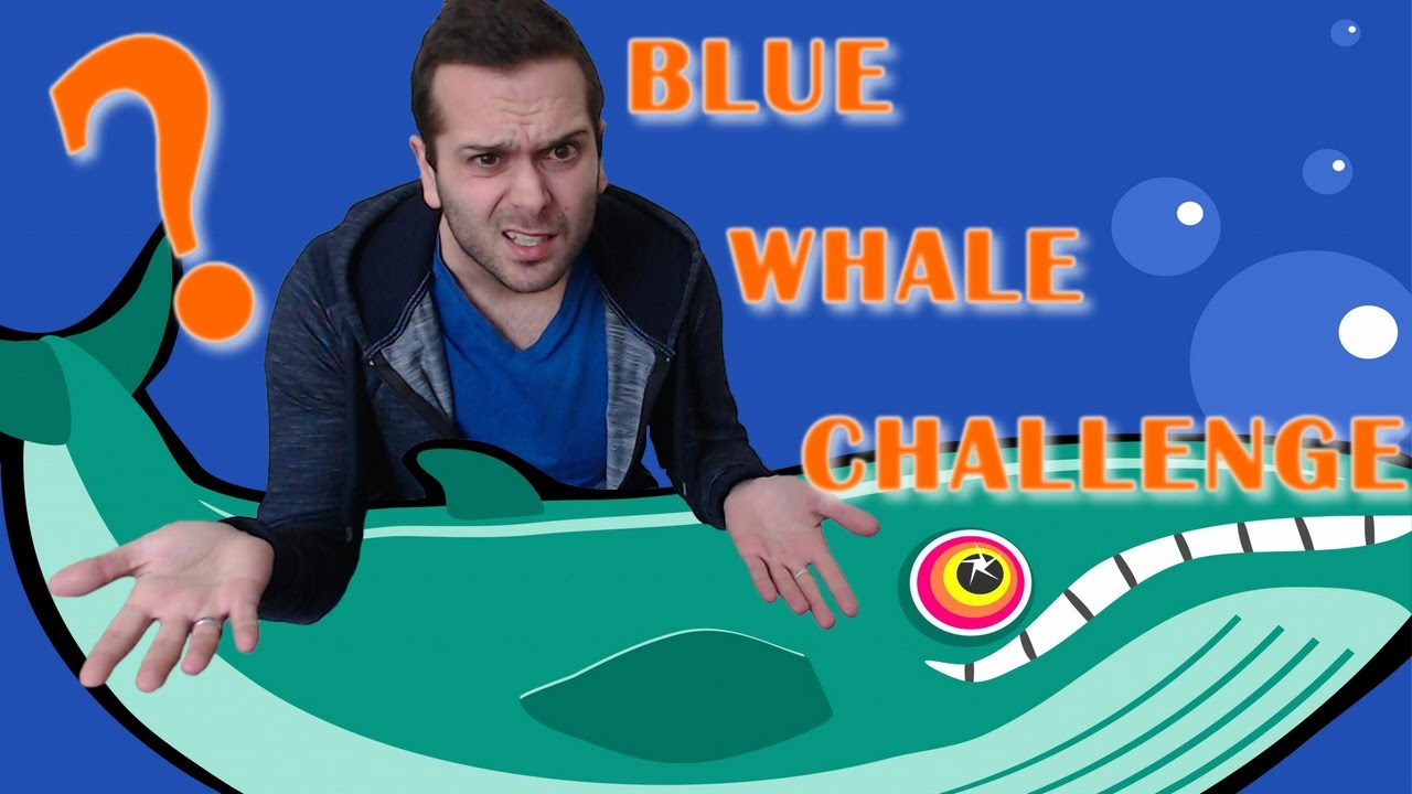Blue Wahl Challange