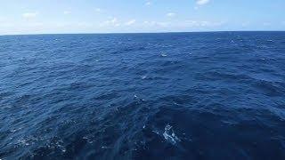 "【JMC】DEEP BLUE SPIRITS ""エンディング""~海上自衛官 5つのスピリッツ~"