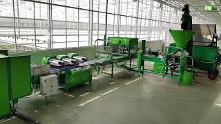 Budowa i wyposażenie szklarni / Projekt od podstaw / Greenhouses