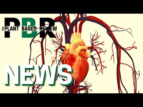 new-study-shows-eating-plant-based-reduces-risk-of-heart-disease-&-stroke- -the-plant-based-review