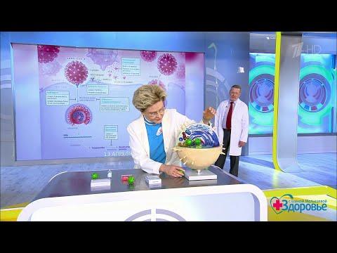 Лекарства от коронавируса. Здоровье.  03.05.2020