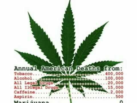 Annual Marijuana Death Rate