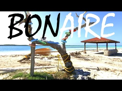 this-is-the-netherlands?!-beautiful-bonaire-island