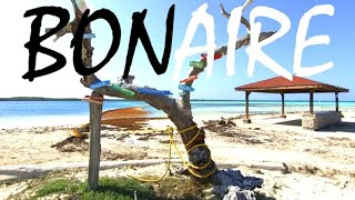 A Tour of BONAIRE ISLAND | More Than Just Beaches!