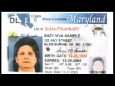 Licencia En 45 Youtube - Maryland Dias De