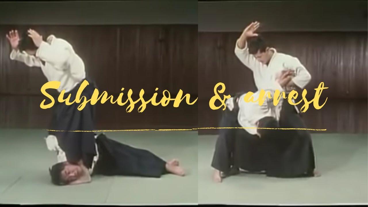 Lethal Jujutsu submissions & arresting techniques (Daito ryu Aikijujutsu) 大東流柔術