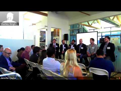 Blockchain in Advertising: Panel Discussion (Q1)