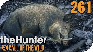 THE HUNTER: CALL OF THE WILD #261 - SCHWEINEMISSION!