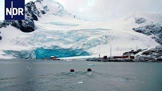 Krillfischerei: Expedition Antarktis mit Greenpeace | DIE REPORTAGE | NDR