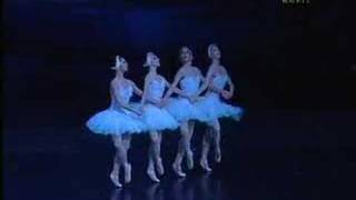 Hungarian National Ballet Company 4 Little Swans - Swan Lake - Hattyúk Tava