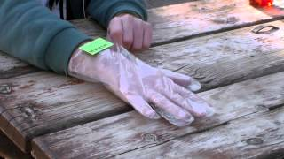 Andrew Jackson Jihad Presents: THE SALAD GLOVE® Infomercial