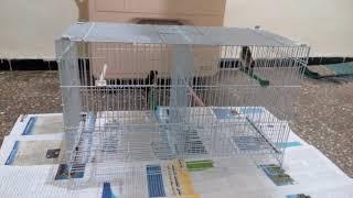 الطريقة المثلى لتقديم الدوش للطيور في فصل الشتاء و أيام البرد