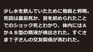 スチュワーデス殺人事件【凶悪犯罪・閲覧注意】