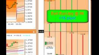 Trend Trade Example Tiger Grids Forex Trading Software